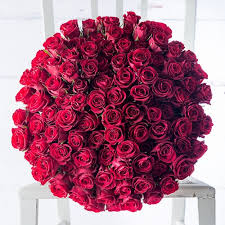 100 Red Holland Roses in a Bouquet