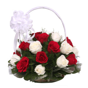 12 White and Red Holland Roses in a Basket