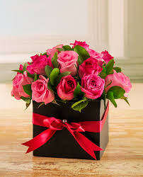 1 dozen Pink Holland Roses in a Box