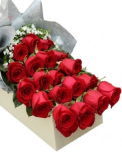 1 dozen Red Holland Rose in a Box