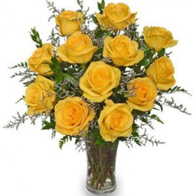 1 dozen Yellow Holland Rose in a Vase