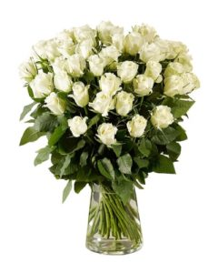 2 dozen White Holland Roses in a Vase