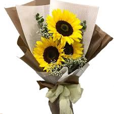 3Pcs Sunflowers