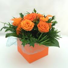 6 pcs Orange Roses in a Box