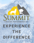 Summit Joint Performance