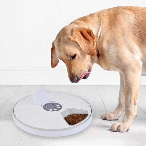 Automatic Pet Feeder Timing Feeder 6 Meals 6 Grids