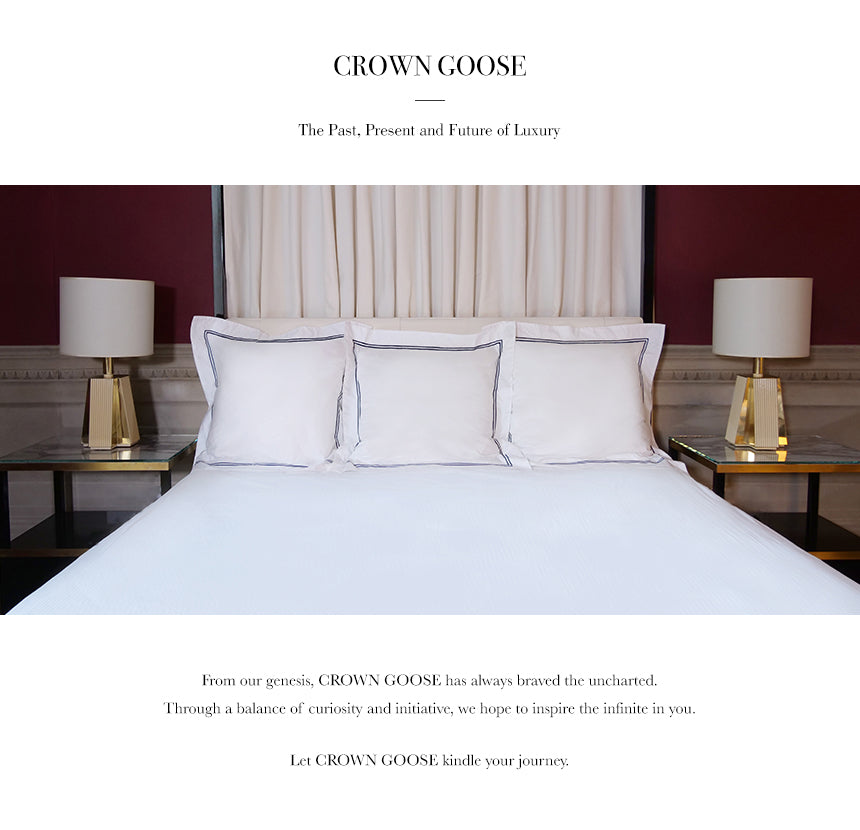 crowngoose-european down pillow sham cover