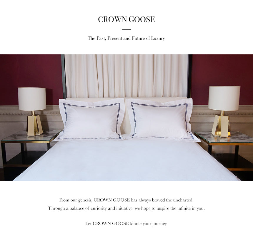 crowngoose-standard down pillow sham set
