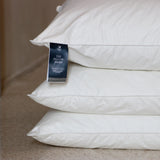 crowngoose-european down pillow sham set