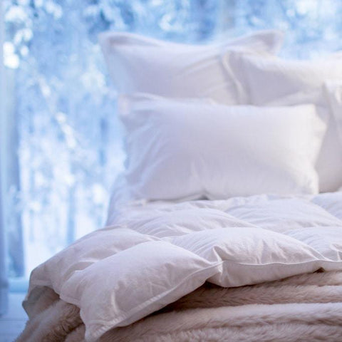 products/goose-down-duvet-twin-duvets.jpg