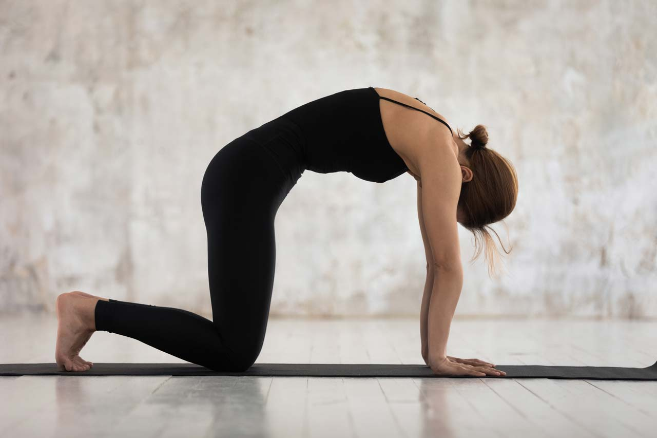 3 Stretches to Increase Flexibility