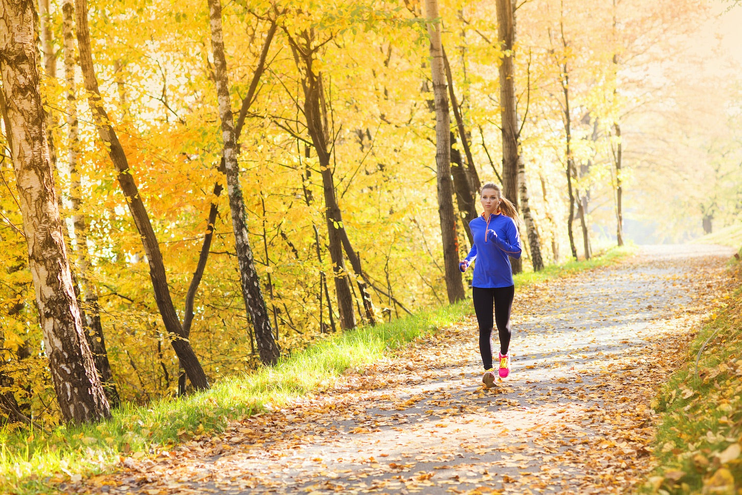 Turning a New Leaf: Revamp Your Workout for Fall