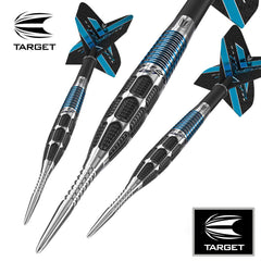 Target Daytona Fire GT01 Darts 24g EXPRESS SHIPPING