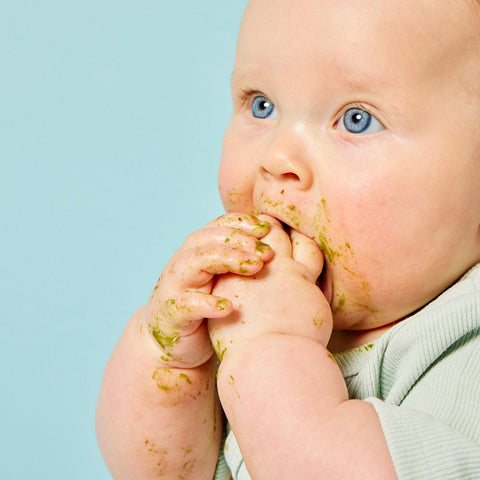 Baby Led Weaning The Difference between Gagging and Choking