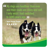 Iams PROACTIVE HEALTH Adult Dry Dog Food - Minichunk Kibble