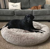 Calming Fluffy Pet Beds