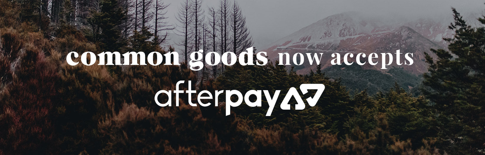 Afterpay Common Goods banner