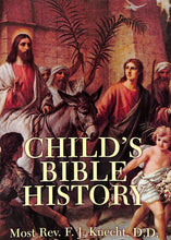 Load image into Gallery viewer, Child's Bible History Textbook