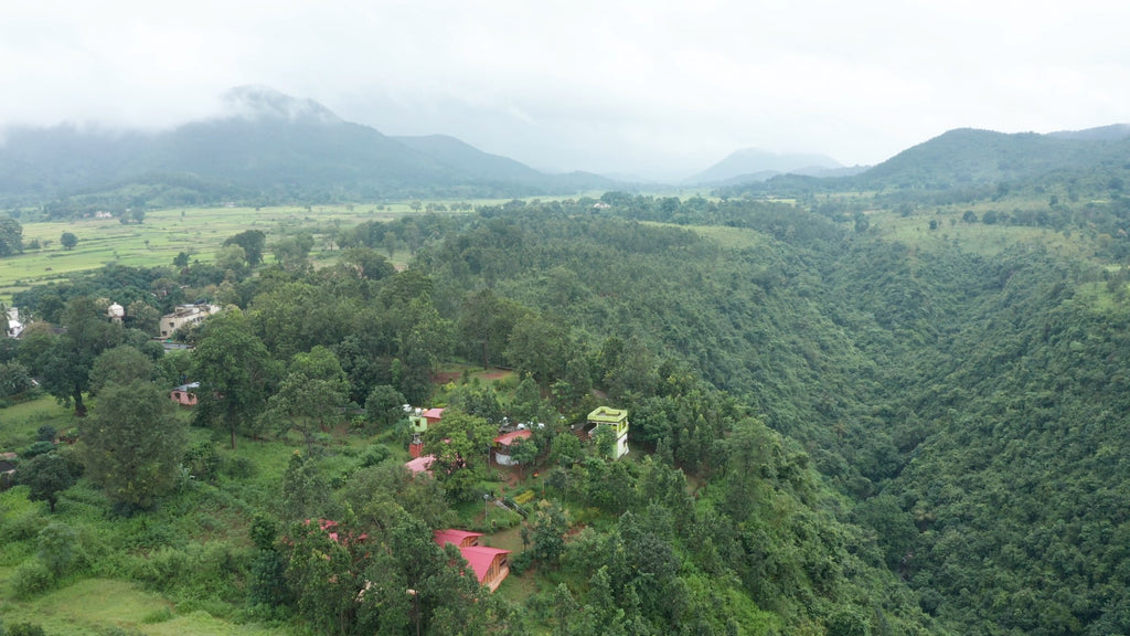 Mandasaru Nature Valley Camp  Aerial Video - 4K Stock Footage - Item #142