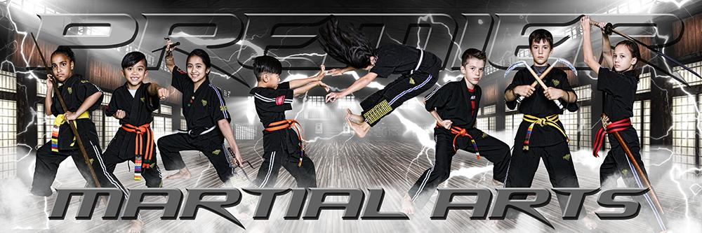 Electric Dojo - Martial Arts Series - Poster/Banner Panoramic-Photoshop Template - Photo Solutions