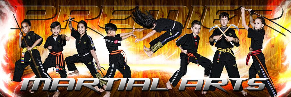 Hardwood Flare - Martial Arts Series - Poster/Banner Panoramic-Photoshop Template - Photo Solutions