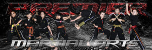 Stone Cold - Martial Arts Series - Poster/Banner Panoramic-Photoshop Template - Photo Solutions