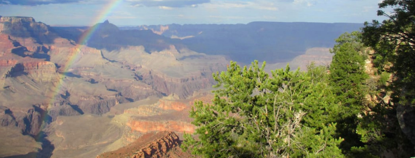 Insider's Guide to Grand Canyon National Park