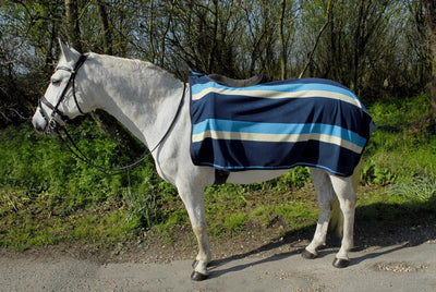 Blue Stripe Fleece Ride on Exercise Sheet - Jacks Pet and Country