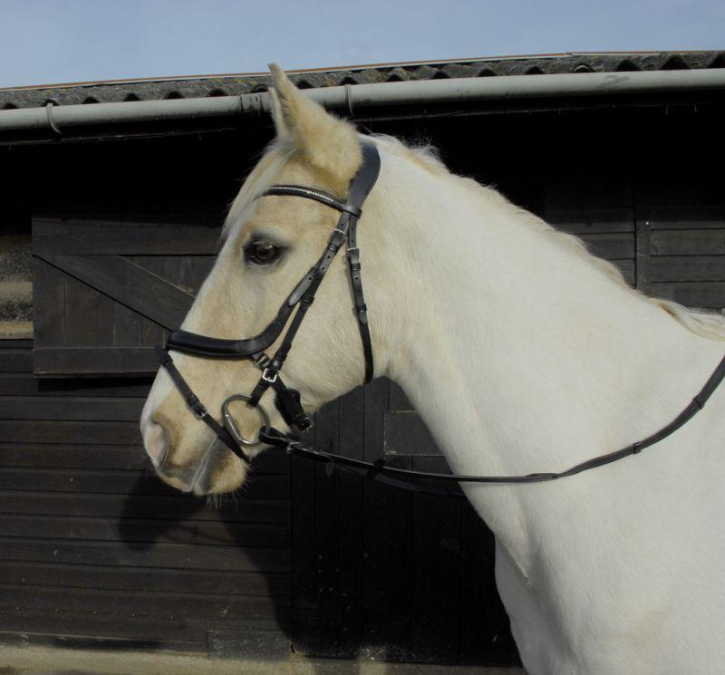 Heritage Anatomical Flash Bridle - Jacks Pet and Country