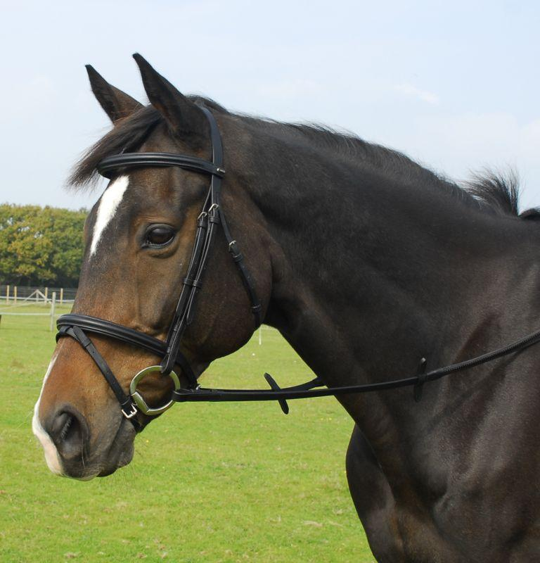 Heritage English Leather Bridle with Flash Noseband - Jacks Pet and Country