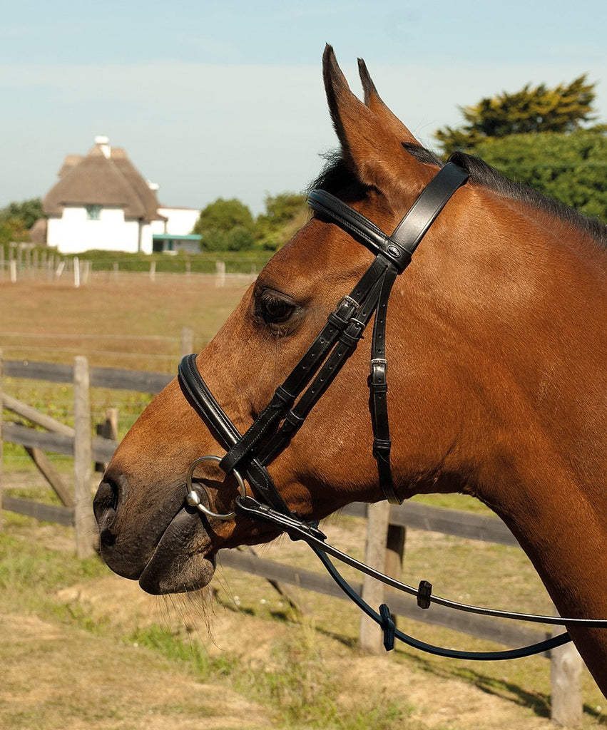 Heritage English Leather Bridle with Raised Cavesson Noseband - Jacks Pet and Country