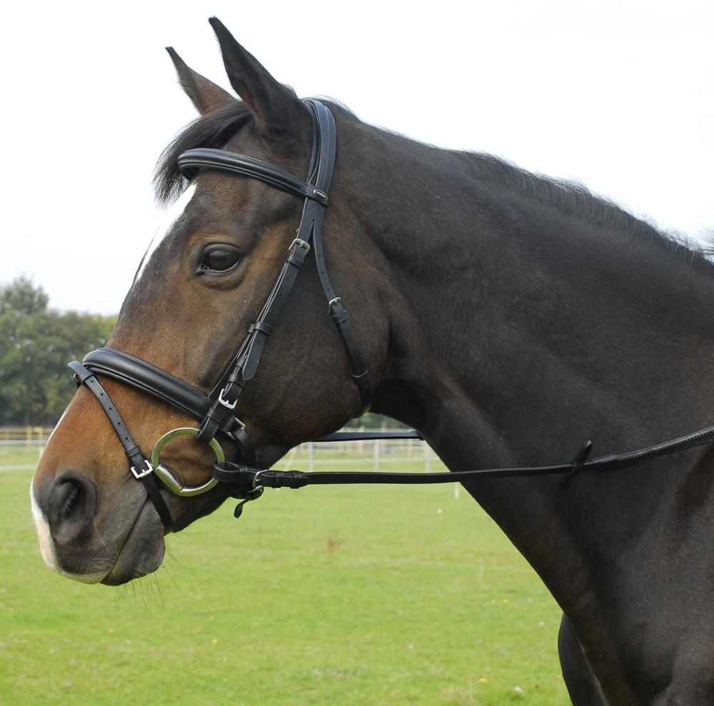 Heritage English Leather 'Comfort' bridle with Flash Noseband - Jacks Pet and Country