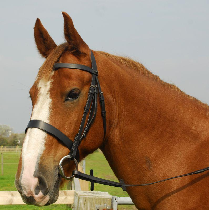 Heritage English Leather Hunter Bridle with Wide Cavesson Noseband - Jacks Pet and Country