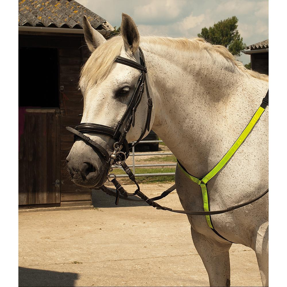 Hi Vis Neck Strap - Martingale - Jacks Pet and Country
