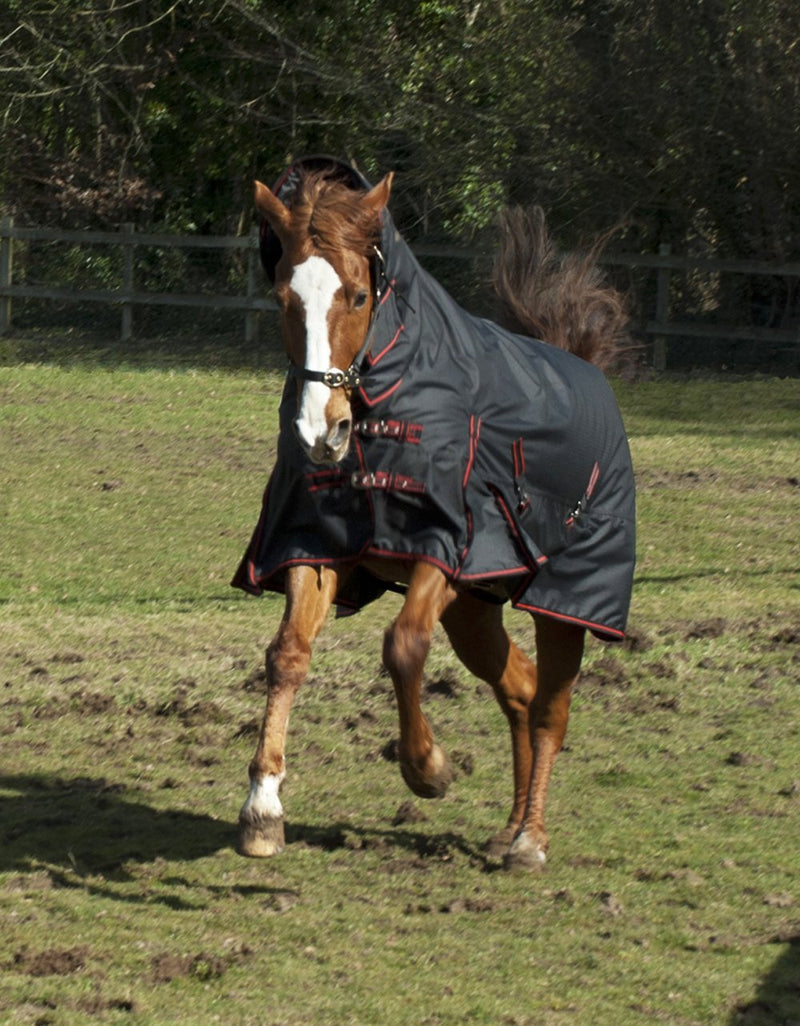 Rhinegold Aspen Turnout Rug 350g - Jacks Pet and Country