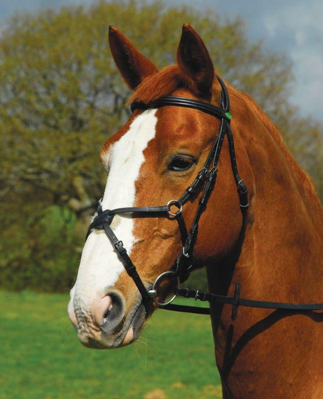 Rhinegold German Leather Comfort Bridle with Mexican Noseband - Jacks Pet and Country