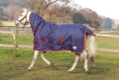 Rhinegold Torrent No Fill Full Neck Turnout Rug - Jacks Pet and Country
