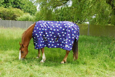 Rhinegold Torrent Star Design Turnout Rug - Jacks Pet and Country