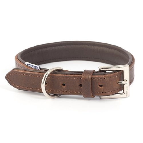 Vintage Leather Collar - Jacks Pet and Country