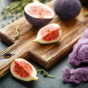 Fig Tree - Scent-Centric