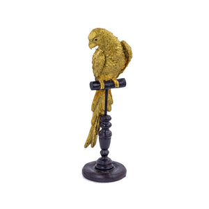 Gold Parrot On A Perch