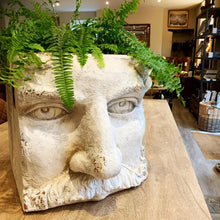 Load image into Gallery viewer, Large Stone Effect Classical Face Planter. Auburn Fox showroom image, Thrapston, Northamptonshire.