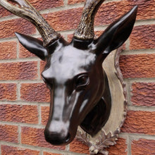 Load image into Gallery viewer, Large Stag Head Wall Bust close up of Stag head.