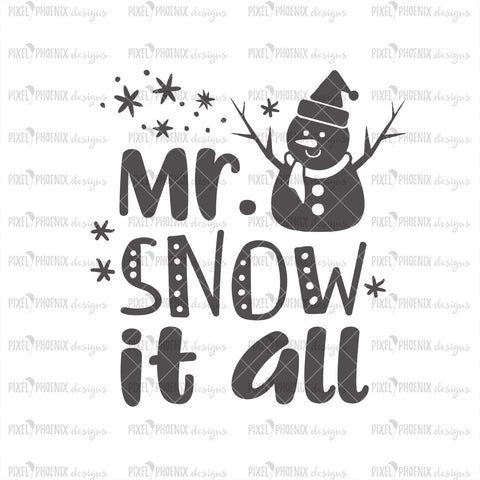 Mr Snow it all SVG, Christmas SVG, Snowman SVG, Snowman cut file, cute Christmas svg, baby svg, svg cut file, cricut, silhouette