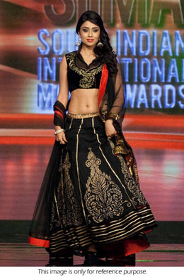 Black Velvet  Lengha Exclusive Beautiful Designr Bollywood Indian Ethnic Partywear 47