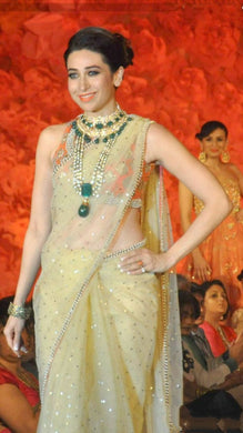 Bollywood Karishma Kapoor Beauty In Lycra Saree