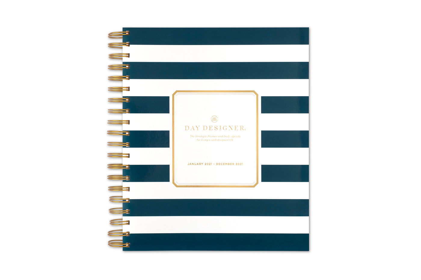 Day designer 8x10 daily monthly planner for blue sky in black and white stripes