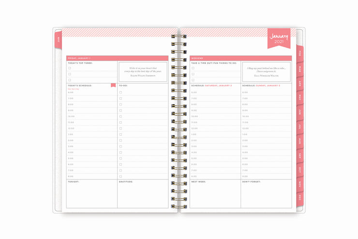 Daily view on this day designer 2021 january daily monthly planner featuring notes section, one hour time periods, and goals