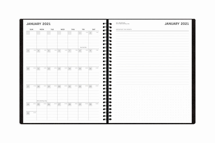 Blue Sky weekly planner notes with a monthly overview for notes and lined writing space for january 2021