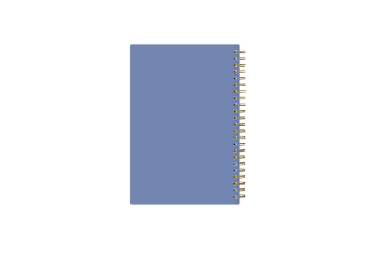 2021-2022 academic school weekly and monthly notes planner from Day Designer for blue Sky featuring a light blue backcover and gold twin-wire O binding